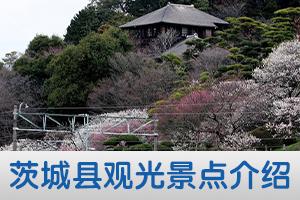 茨城县观光景点介绍